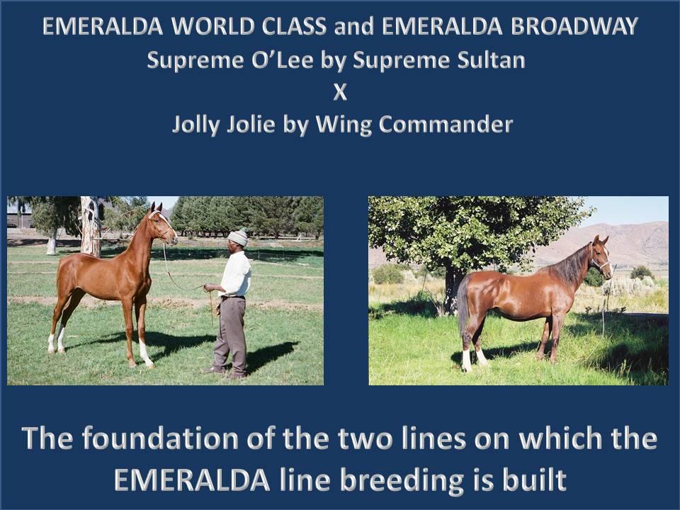 emeralda-world-class-and-emeralda-broadway