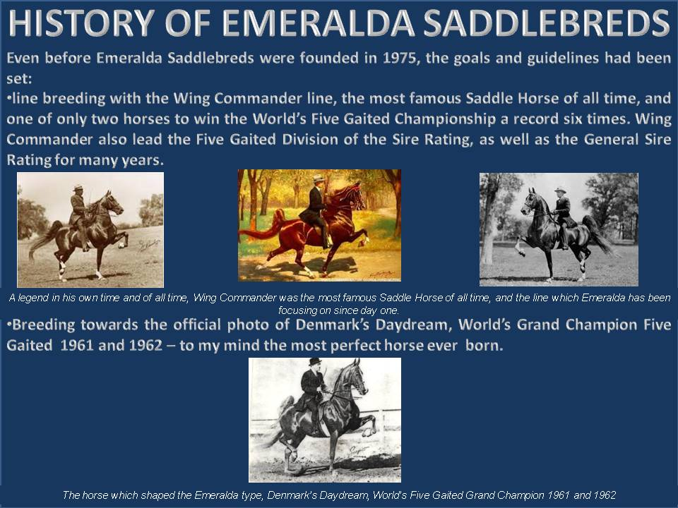HISTORY OF EMERALDA SADDLEBREDS 1