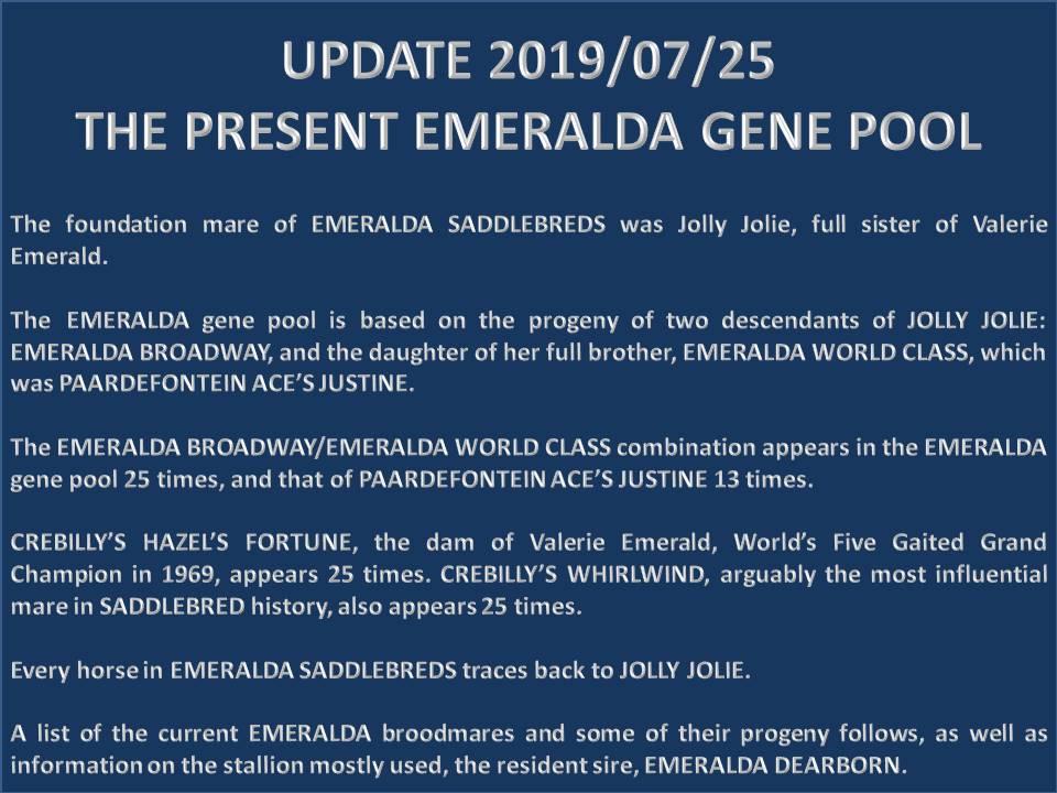 history-of-emeralda-saddlebreds-15