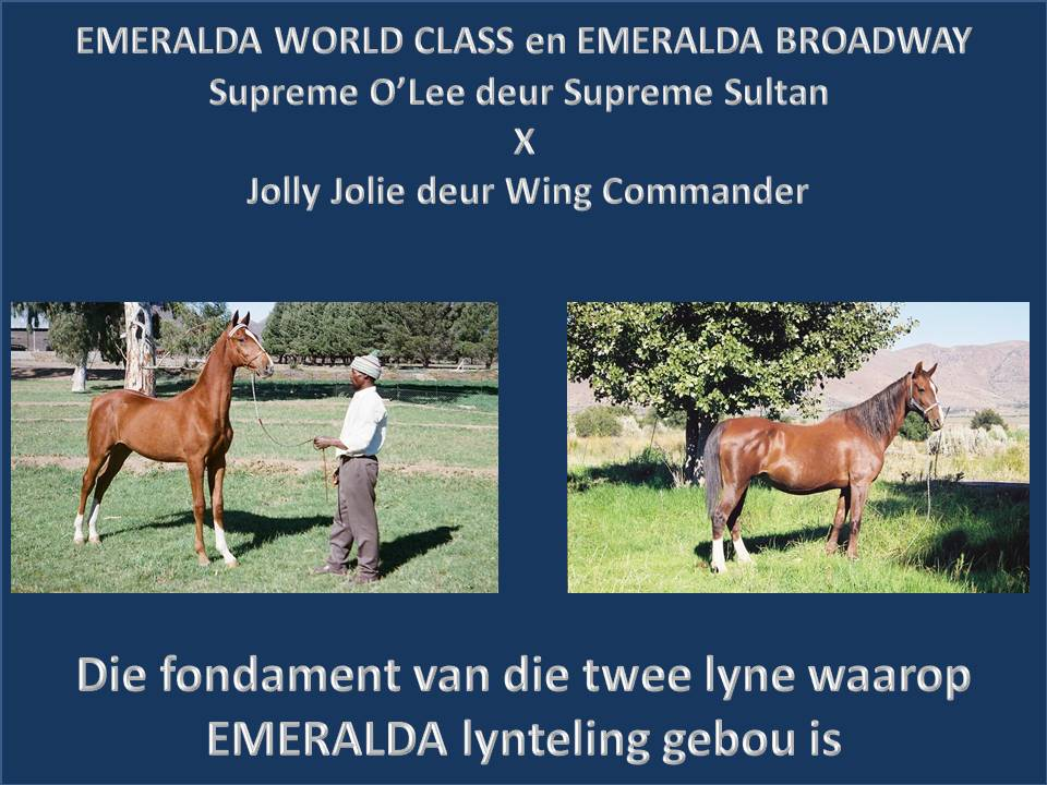 emeralda-world-class-en-emeralda-broadway