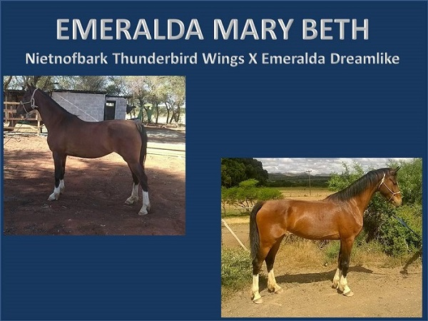 emeralda-mary-beth-powerpoint