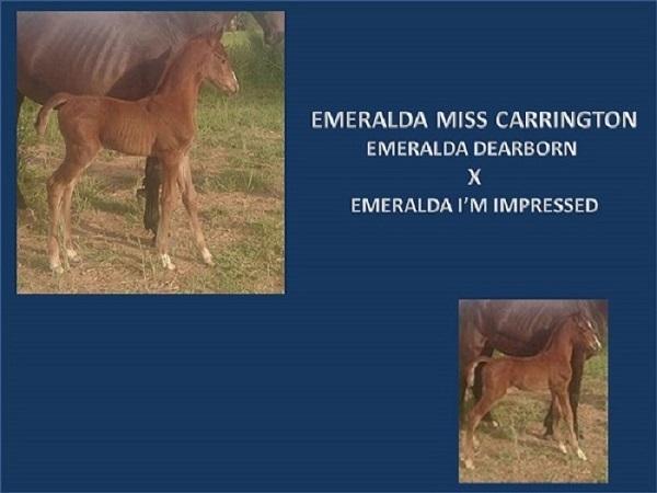 emeralda-miss-carrington-powerpoint