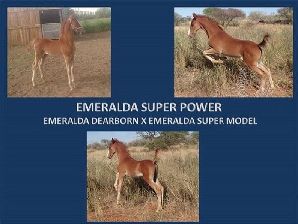 emeralda-super-power-powerpoint